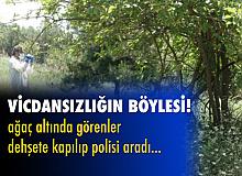 Bursa'da ağaç altına atılmış bebek cesedi bulundu