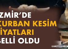 İzmir'de kurban kesim fiyatları belli oldu