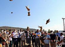 32 köyde 900 adet kınalı keklik doğaya bırakıldı