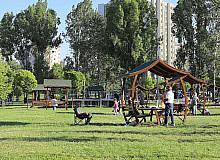 Çankaya parklarında sonbahar hazırlığı