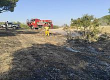 Deliçay köyünde orman yangını büyümeden söndürüldü