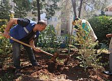 Haliliye'de parklar yenileniyor