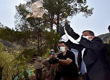 Karaman'da 840 sülün doğaya bırakıldı