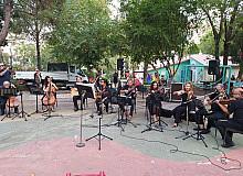 Muğla'da ormana saygı konseri