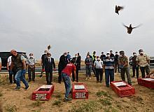 Tekirdağ'da ormanlara 400 keklik salındı