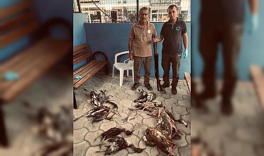 Yaban hayvanlarını avlayan kişiye 28 bin 491 lira ceza