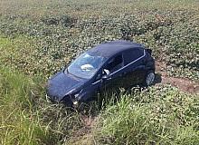 Yoldan çıkan otomobil pamuk tarlasına uçtu: 2 yaralı