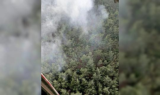 Soma'daki orman yangını kontrol altında